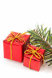 Two Christmas presents, green tree on white background. Royalty Free Stock Photo