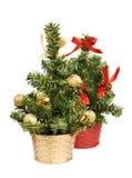 Two christmas tree Stock Image