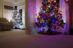 Two Christmas Trees Royalty Free Stock Image