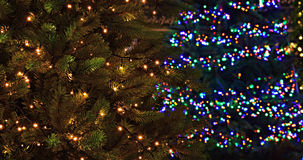 Two Christmas trees with lights, white and colorful Royalty Free Stock Images