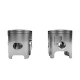 Two chrome disassembled polished pistons Stock Images