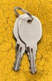 Two chrome keys Royalty Free Stock Photography