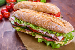 Two Ciabatta Sandwiches with ham and lettuce. Two Ciabatta Sandwiches with lettuce, slices of fresh tomatoes, ham, turkey breast and cheese Royalty Free Stock Photos