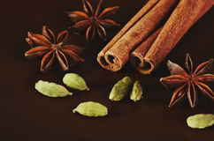 Two cinnamon sticks, three stars anise and a cardamom on a brown Royalty Free Stock Photo