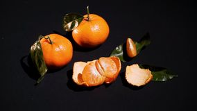 Two citrus mandarin with leafes on black background stock video footage