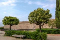 Two Citrus trees and a stone bench in the park. Of Montjuic Castle in Barcelona, Spain. Montjuic Castle is an old military fortress, built on top of Montjuic stock photo