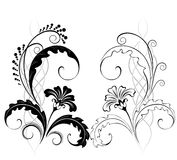 Two classic flowers. Two beautiful flowers, drawn by a black paint in classic style on a white background Royalty Free Stock Photo