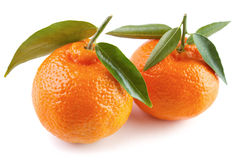 Two clementines Stock Image