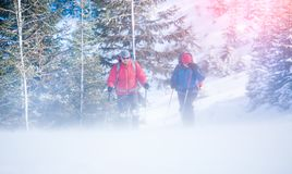 Two climbers during a Blizzard. Two climbers are in the mountains during a snowstorm, a Blizzard during the ascent of two men with backpacks Royalty Free Stock Photo