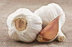 Two cloves of garlic and garlic clove Stock Image
