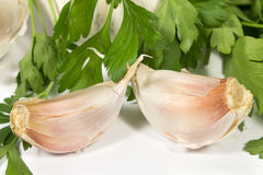 Two cloves of garlic and leaves of fresh parsley Stock Photography