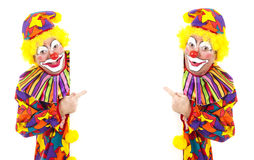 Two Clowns with White Space Stock Image