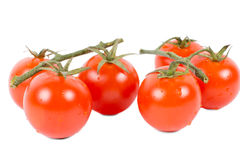Ripe red grape or cherry tomatoes Royalty Free Stock Images