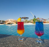 Two cocktail drinks by a tropical pool Royalty Free Stock Image