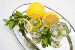 Two cocktail glasses and mint with lemons on tray. Photo of Two cocktail glasses and mint with lemons on tray Royalty Free Stock Photos