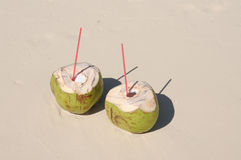 Two coconut on the beach stock photography