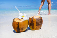 Two coconut cocktails on white sand beach with woman legs. Vacation and travel concept Stock Images