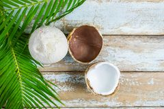 Two coconut and coconut leaves on wooden table stock photo