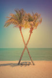 Two coconut palm tree cross on the tropical beach at daytime. Royalty Free Stock Photos