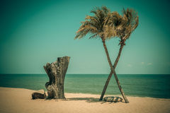 Two coconut palm tree cross on the tropical beach at daytime. Royalty Free Stock Photography