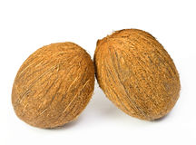 Two coconuts. Two isolated coconuts on a white background Stock Photos