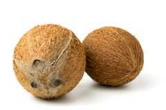 Two coconuts closeup. Two coconuts on a white background, closeup Royalty Free Stock Photography