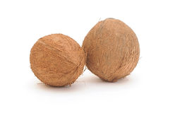 Two coconuts Royalty Free Stock Images