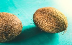 Two coconuts with shell on a blue background. Two coconuts with shell on a blue colored background Royalty Free Stock Photography