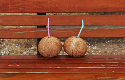 Two Coconuts. Side by side on a bench in Jinhae, South Korea Stock Image