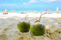 Two coconuts with straws lie on the beach on the background of t. He beach with people. Front view Royalty Free Stock Image