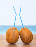 Two coconuts with tubules against sea Stock Photography