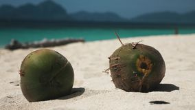 Coconuts on a white tropical beach. Two coconuts on a white sand tropical beach in the philippines with a blue sea water behind stock video footage