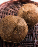 Two coconuts. On wicker background, one in focus on foreground and other behind out of focus Royalty Free Stock Photos