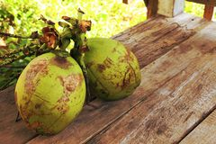 Two coconuts on wooden floor. With brown background Royalty Free Stock Photo
