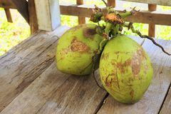Two coconuts on wooden floor. With brown background Stock Images