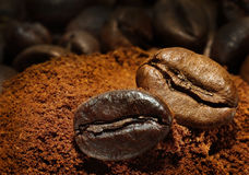 Two coffee beans Royalty Free Stock Image