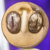 Two coffee beans on ice cream Royalty Free Stock Image