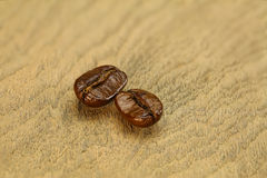 Two coffee beans Stock Image