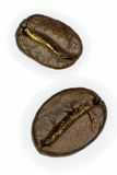 Two coffee beans. On a white background Stock Image