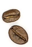 Two coffee beans. On a white background Royalty Free Stock Images
