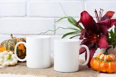 Free Two Coffee Mug Mockup With Pumpkins And Lily Royalty Free Stock Image - 123607036