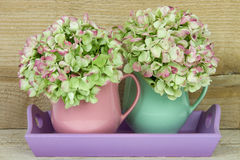 Two coffee mugs filled with hydrangea Stock Image