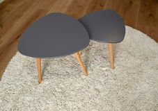 Two coffee tables stand on a round rug. Living room interior fragment.  royalty free stock image