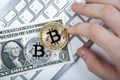 Two coins of bitcoin and a dollar bill and human hand on laptop Royalty Free Stock Photos