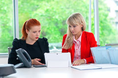 Two colleague worker in office with computer Royalty Free Stock Photography