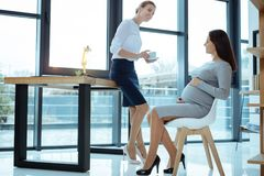 Two colleagues having friendly talk. I am ok. Delighted pregnancy sitting in semi position while having rest and looking at her partner Royalty Free Stock Images