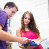 Two college students in library Stock Photos