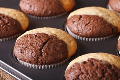 Two-color chocolate muffins in baking dish macro, horizontal Stock Photography