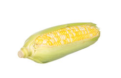 Two color corn isolated on white Royalty Free Stock Photo