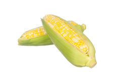 Two color corns isolated on white Royalty Free Stock Images
